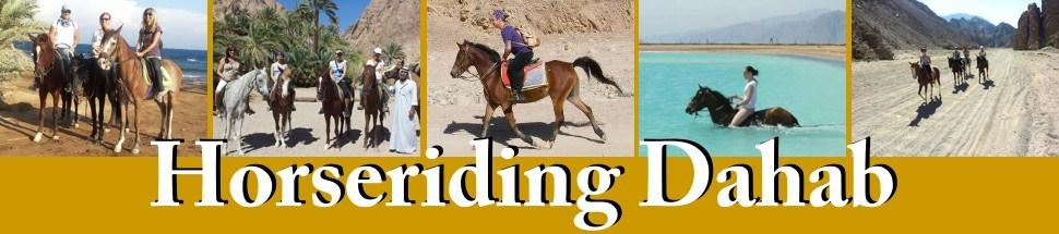 Horseriding Dahab | Pferdereiten / Pferdeausritte in Dahab