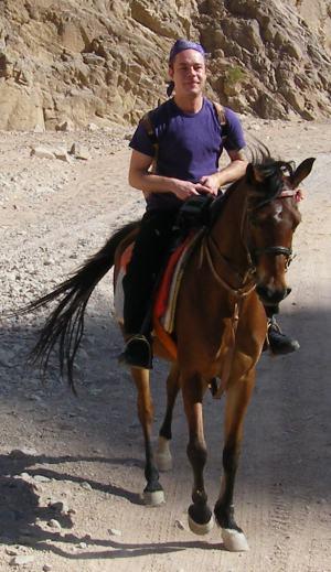 Horseride Dahab Egypth
